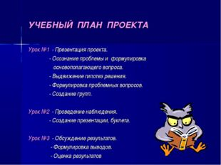 УЧЕБНЫЙ ПЛАН ПРОЕКТА Урок №1 - Презентация проекта. - Осознание проблемы и фо