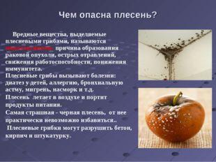 Чем опасна плесень? Вредные вещества, выделяемые плесневыми грибами, называют