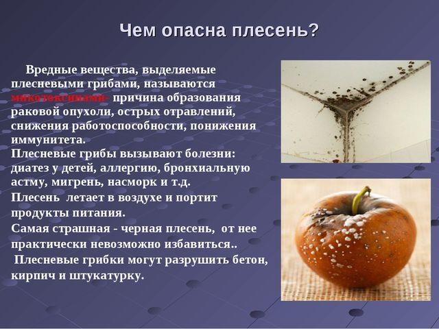 Чем опасна плесень? Вредные вещества, выделяемые плесневыми грибами, называют...