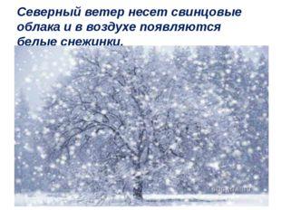 Северный ветер несет свинцовые облака и в воздухе появляются белые снежинки.