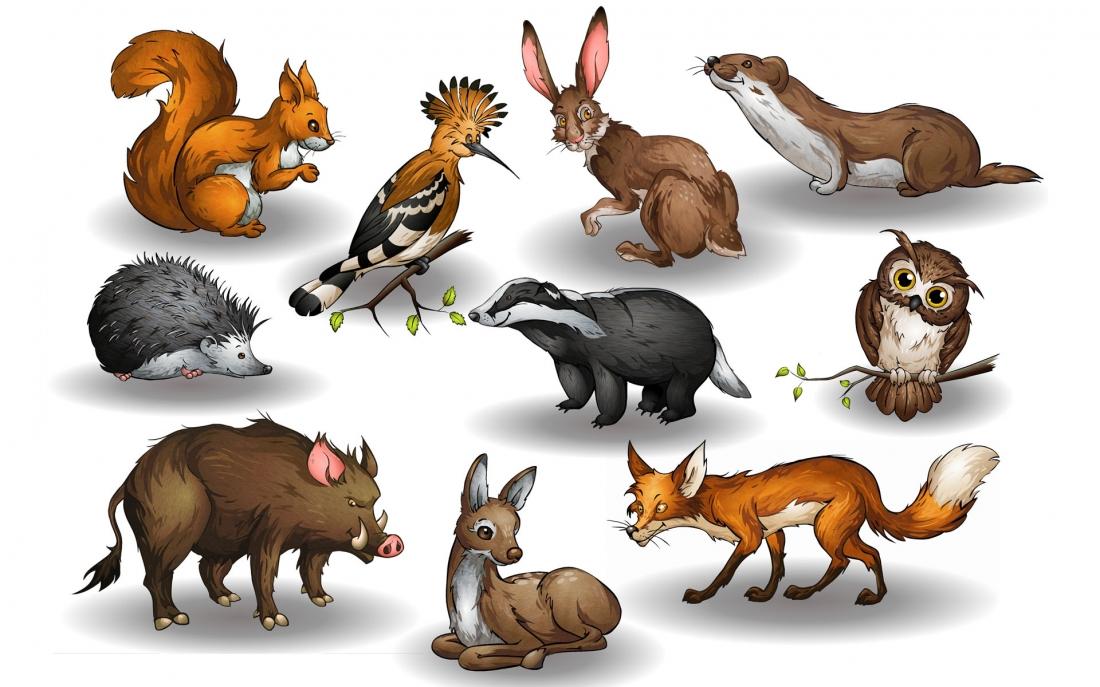 C:\Users\User\Downloads\какие-животные-обитают-в-лесу.jpg