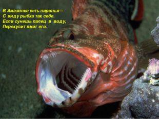 В Амазонке есть пиранья – С виду рыбка так себе. Если сунешь палец в воду, Пе