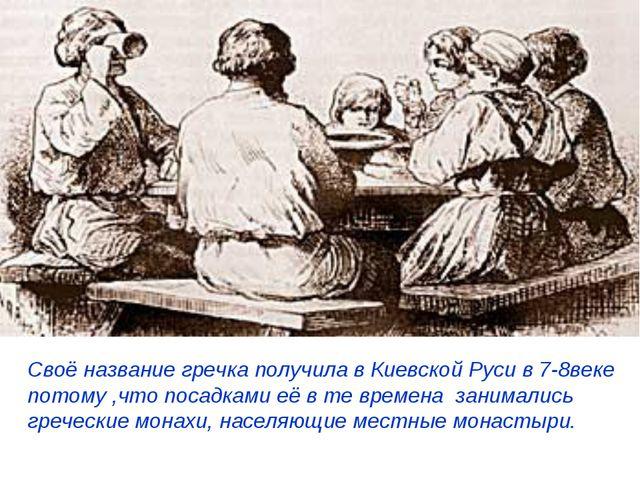 Своё название гречка получила в Киевской Руси в 7-8веке потому ,что посадками...