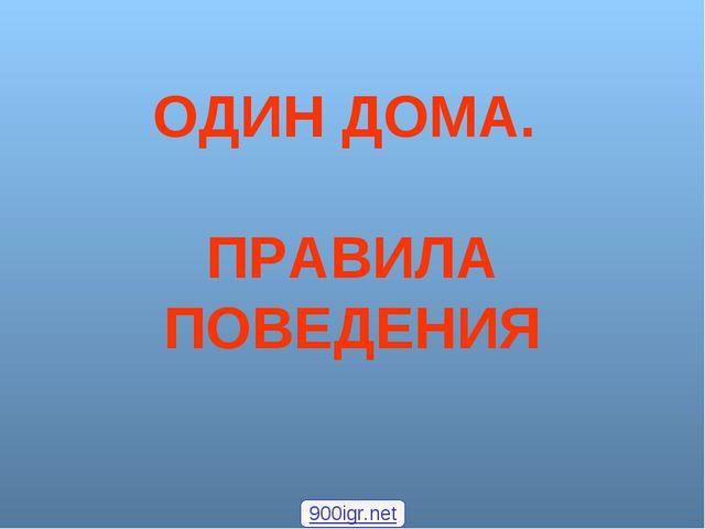 ОДИН ДОМА. ПРАВИЛА ПОВЕДЕНИЯ 900igr.net