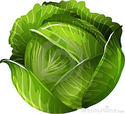 http://thumbs.dreamstime.com/x/cabbage-21894205.jpg