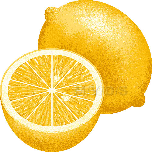 http://m-y-d-s.com/en/fruits/lemon/a.jpg