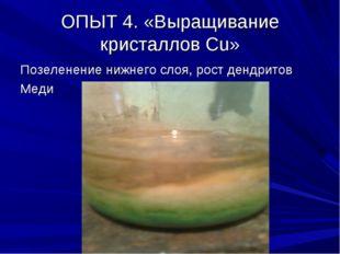 ОПЫТ 4. «Выращивание кристаллов Сu» Позеленение нижнего слоя, рост дендритов