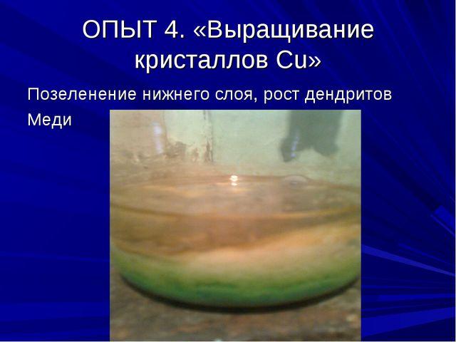 ОПЫТ 4. «Выращивание кристаллов Сu» Позеленение нижнего слоя, рост дендритов...