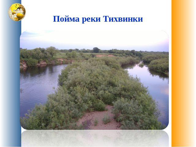 Пойма реки Тихвинки