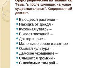"""Орфографическая пятиминутка. Тема: """"ь после шипящих на конце существительных"""""""