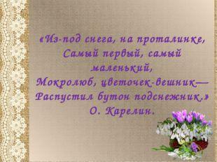 «Из-под снега, на проталинке, Самый первый, самый маленький, Мокролюб, цветоч
