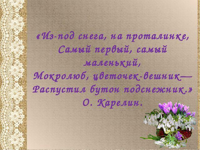 «Из-под снега, на проталинке, Самый первый, самый маленький, Мокролюб, цветоч...