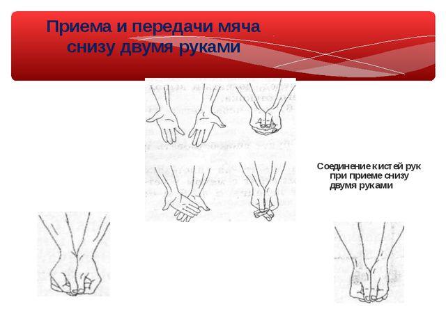 Приема и передачи мяча снизу двумя руками Соединение кистей рук при приеме сн...