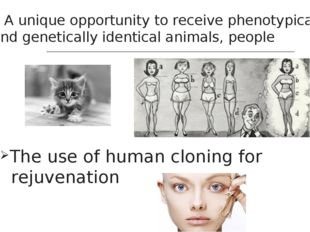 A unique opportunity to receive phenotypically and genetically identical ani