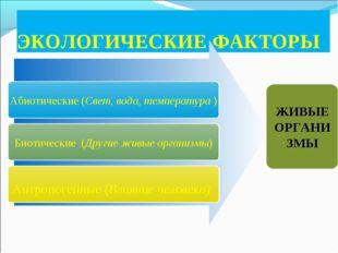 ЭКОЛОГИЧЕСКИЕ ФАКТОРЫ Абиотические (Свет, вода, температура ) Биотические (Др