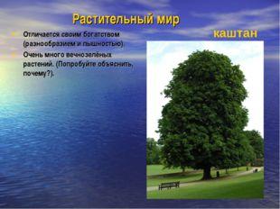 Растительный мир Отличается своим богатством (разнообразием и пышностью). Оче