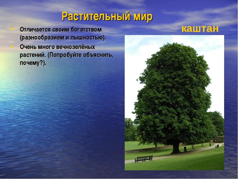 Растительный мир Отличается своим богатством (разнообразием и пышностью). Оче...
