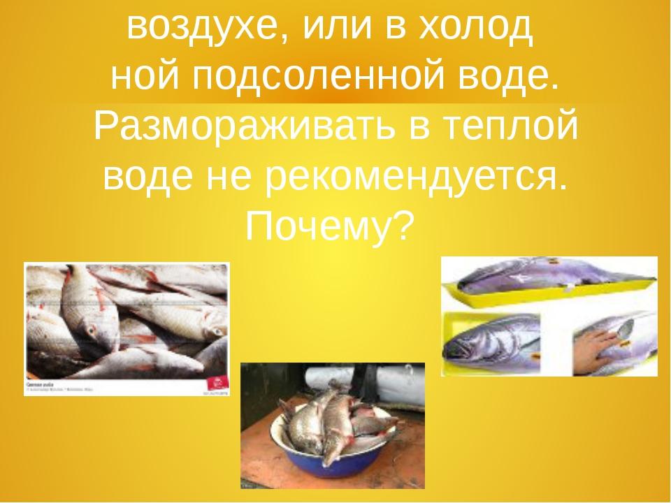 5. Рыбу размораживают на воздухе, или в холод  ной подсоленной воде. Размораж...