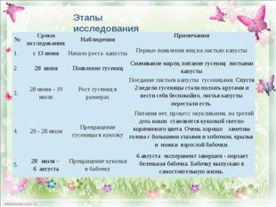 Этапы исследования № Сроки исследования Наблюдения Примечания 1. с 13 июня Н