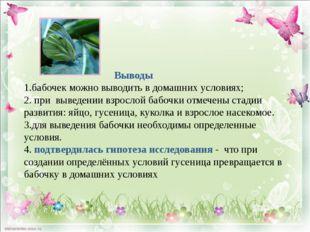 Выводы 1.бабочек можно выводить в домашних условиях; 2. при выведении взросл