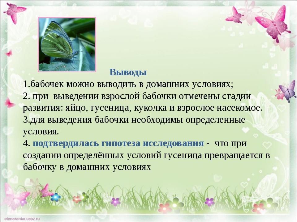 Выводы 1.бабочек можно выводить в домашних условиях; 2. при выведении взросл...