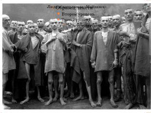 Люди к концлагере «Майданек»