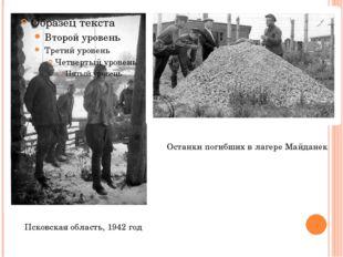 Псковская область, 1942 год Останки погибших в лагере Майданек