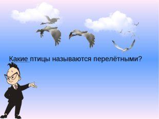 Какие птицы называются перелётными?