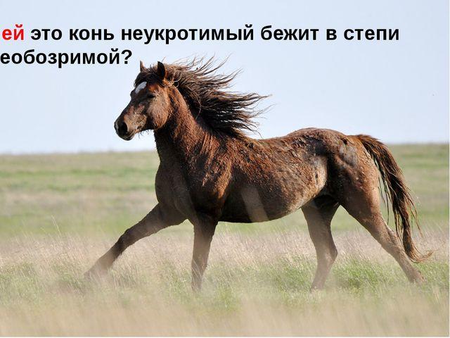 Чей это конь неукротимый бежит в степи необозримой?