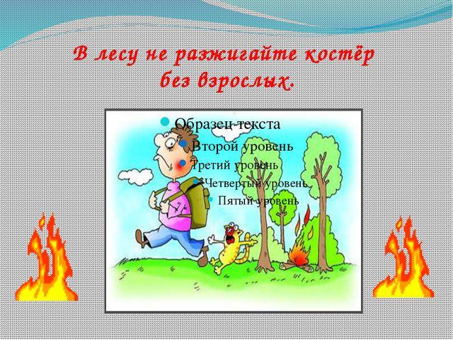 В лесу не разжигайте костёр без взрослых.