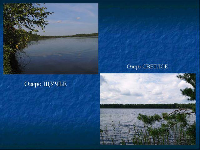 Озеро ЩУЧЬЕ Озеро СВЕТЛОЕ