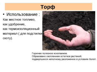 Торф Использование : Как местное топливо, как удобрение, как термоизоляционны