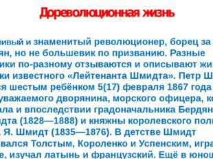 Дореволюционная жизнь Неудачливый и знаменитый революционер, борец за права к