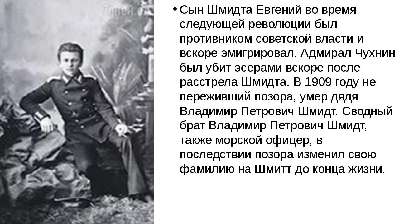 Сын Шмидта Евгений во время следующей революции был противником советской вл...
