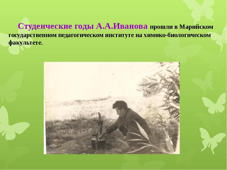 Студенческие годы А.А.Иванова прошли в Марийском государственном педагогичес...