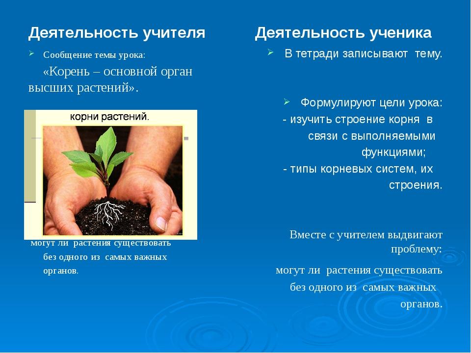 сообщение на тему корень адреса микрозаймов в истре
