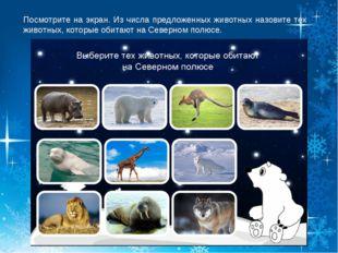 Посмотрите на экран. Из числа предложенных животных назовите тех животных, ко