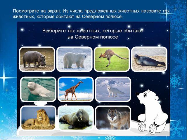 Посмотрите на экран. Из числа предложенных животных назовите тех животных, ко...