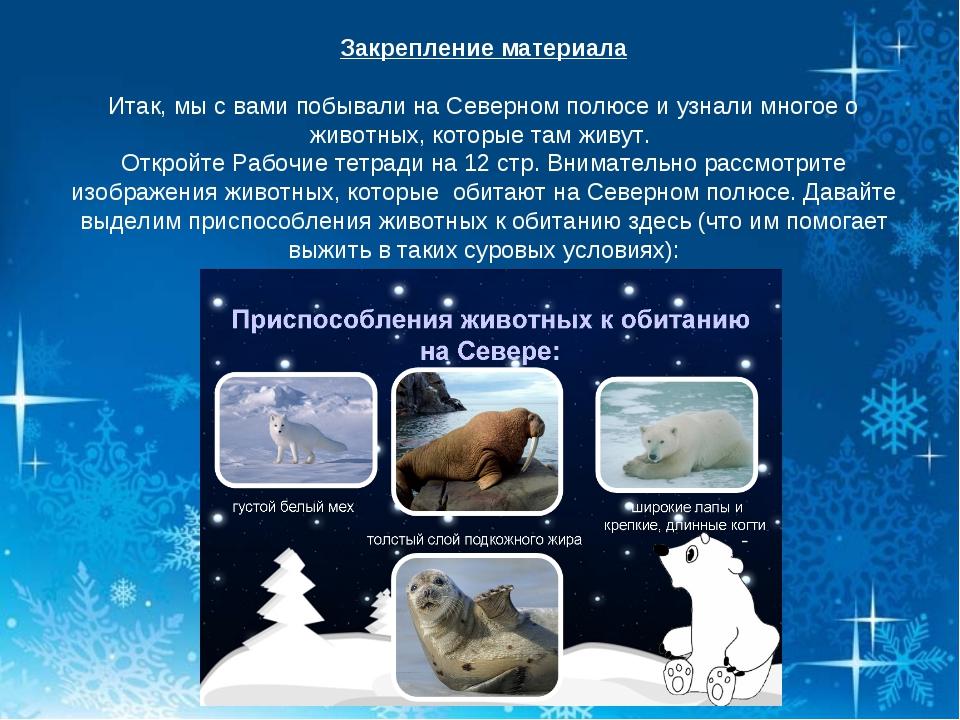 Закрепление материала Итак, мы с вами побывали на Северном полюсе и узнали мн...