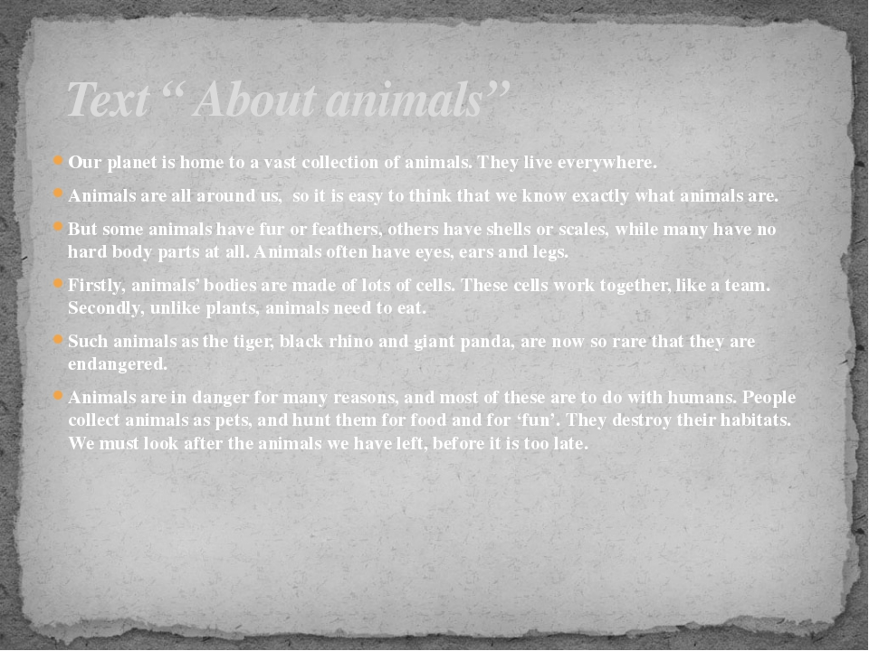 Our planet is home to a vast collection of animals. They live everywhere. Ani...
