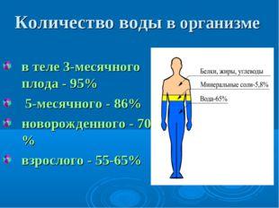 Количество воды в организме в теле 3-месячного плода - 95% 5-месячного - 86%