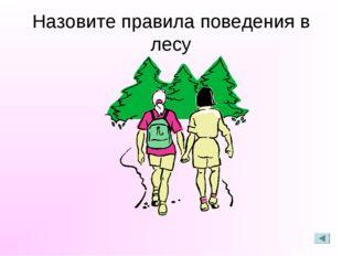 Назовите правила поведения в лесу