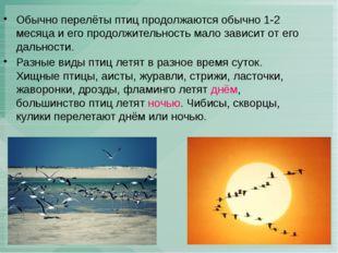 Обычно перелёты птиц продолжаются обычно 1-2 месяца и его продолжительность м
