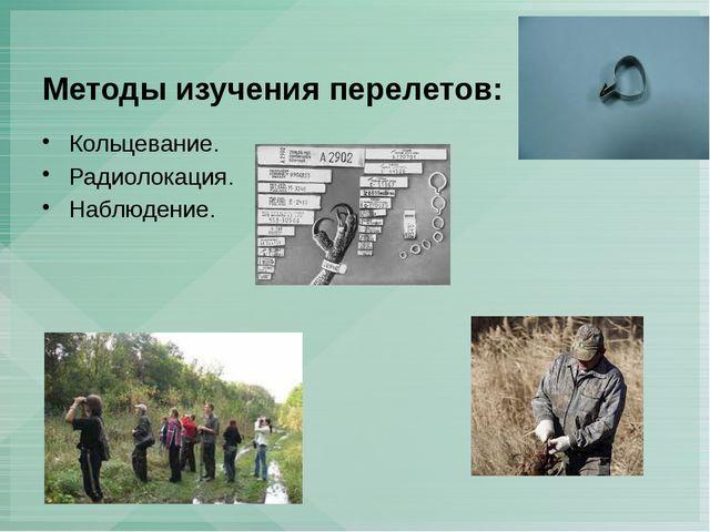 Методы изучения перелетов: Кольцевание. Радиолокация. Наблюдение.