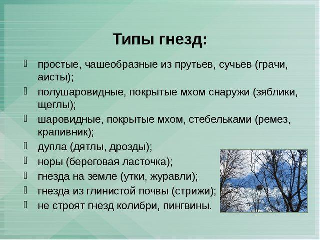 Типы гнезд: простые, чашеобразные из прутьев, сучьев (грачи, аисты); полушаро...
