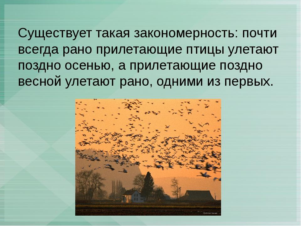 Существует такая закономерность: почти всегда рано прилетающие птицы улетают...