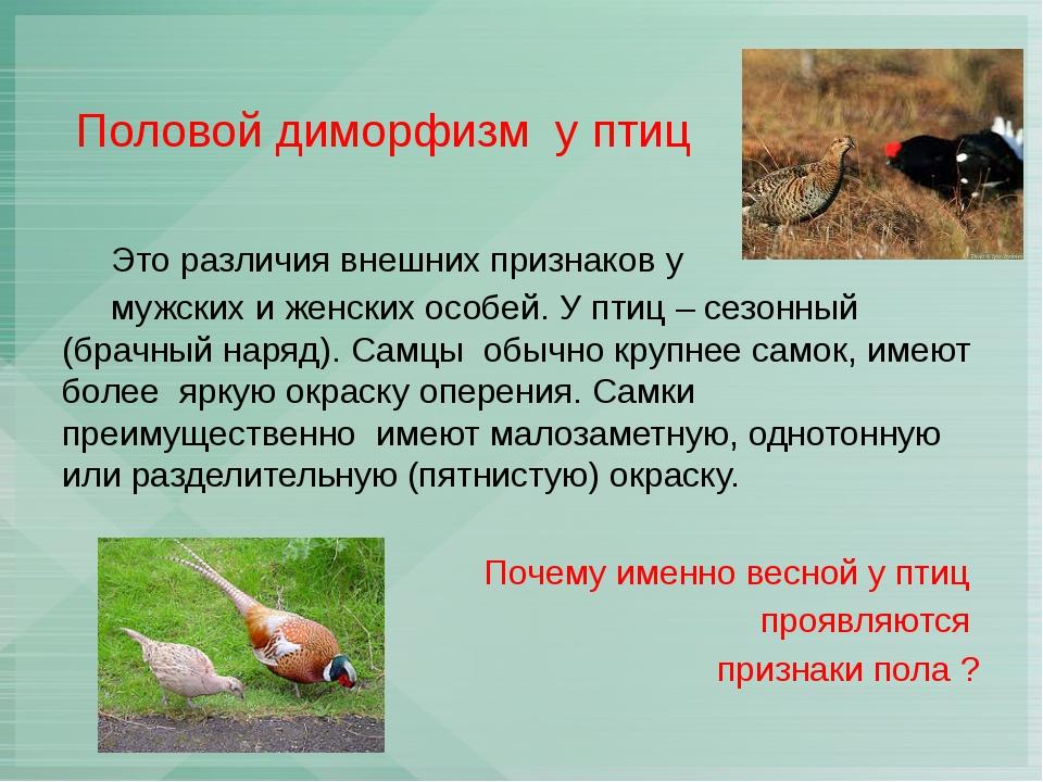 Половой диморфизм у птиц Это различия внешних признаков у мужских и женских...