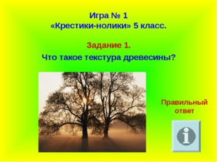 Игра № 1 «Крестики-нолики» 5 класс. Задание 1. Что такое текстура древесины?