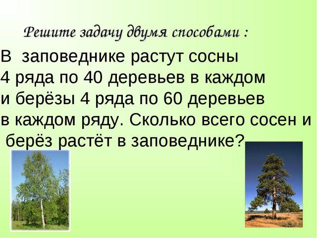 Решите задачу двумя способами : В заповеднике растут сосны 4 ряда по 40 дерев...