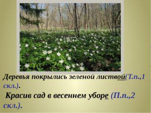 Деревья покрылись зеленой листвой(Т.п.,1 скл.). Красив сад в весеннем уборе (